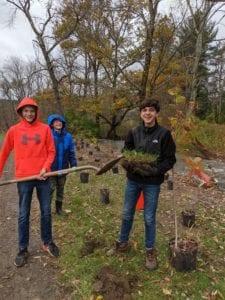 studentsplanting trees